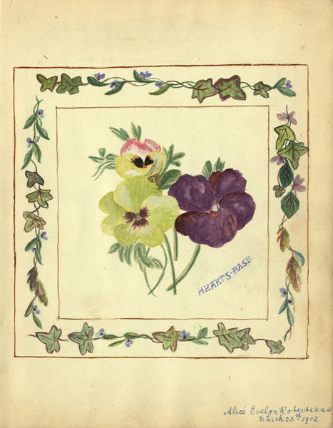 Alice Evelyn Robertshaw, Pansy Flowers - Original 1902 watercolour painting
