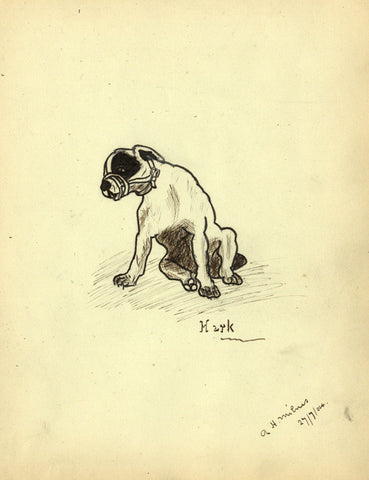 A.H. Milnis, Seated Dog with Face Guard - Original 1904 pen & ink drawing