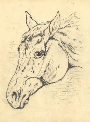 J.E. Jeffreys, Horse's Head Study - Original late 19th-century graphite drawing