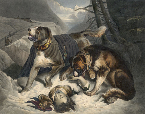 Saint Bernard Dog Rescue, after Landseer - Mid-19th-century engraving print