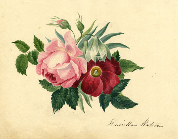 Henrietta Watson, Peony & Rose Flowers - Early 19th-century watercolour painting
