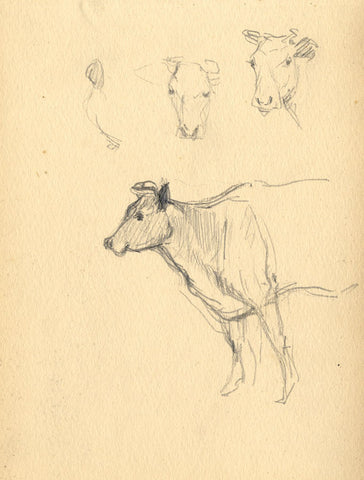 Cow in Profile with Head Studies - Original late 19th-century graphite drawing
