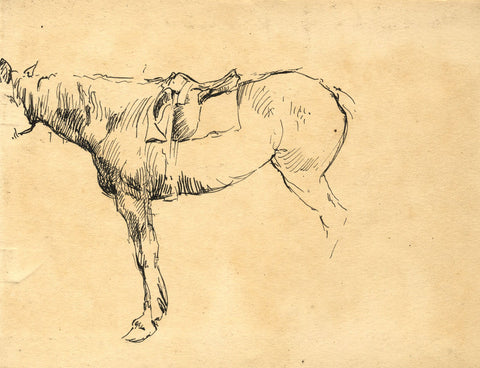 Horse with Saddle Detail - Original late 19th-century pen & ink drawing
