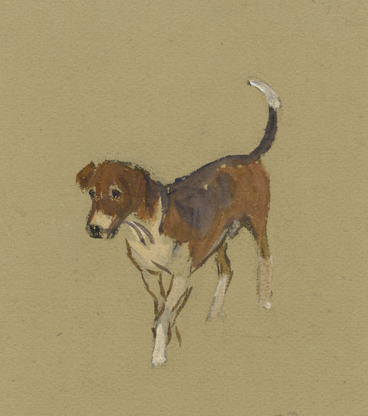 Alice Des Clayes ARCA, Beagle Dog - early 20th-century watercolour painting