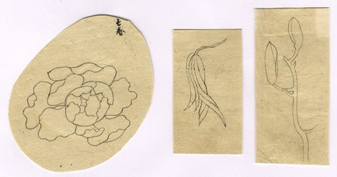 Stylised Floral Designs - Original 19th-century pen & ink drawing
