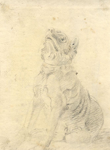John Varley OWS, Study of a Dog - Original 18th-century graphite drawing