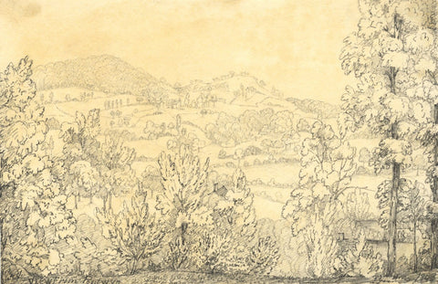 View from Pentwyn, South Wales - Original 1848 graphite drawing