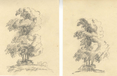 Towering Tree Studies, Two Sheets - Early 19th-century graphite drawing