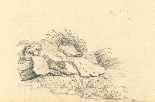 Anna Knowles, Rocks in Tall Grass - Original early 19th-century graphite drawing