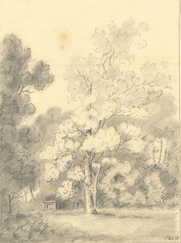 Anna Knowles, Lone Tree near a Stone Grave - Original 1810 graphite drawing