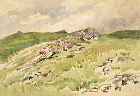 John Murray Thomson RSA, Mountain Grasses Scotland -Mid-20th-century watercolour