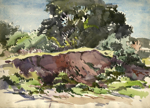 John Murray Thomson RSA, Tree by Hillside Scotland -Mid-20th-century watercolour