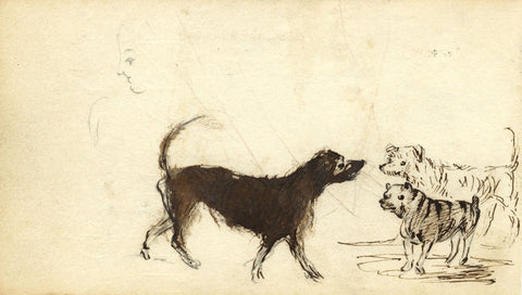 Edward Fitzgerald Campbell, Study of Dogs - 1840s pen & ink drawing