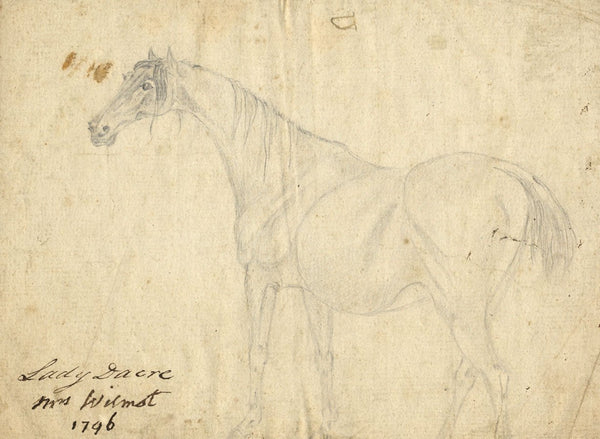 Barbarina Brand, Mrs Wilmot/Lady Dacre, Horse Study - 1796 graphite drawing
