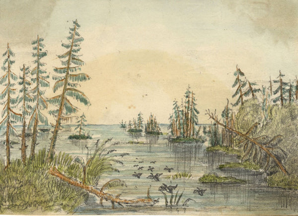 Albert A. Harcourt, 1000 Islands, Ontario - Original 1873 graphite drawing