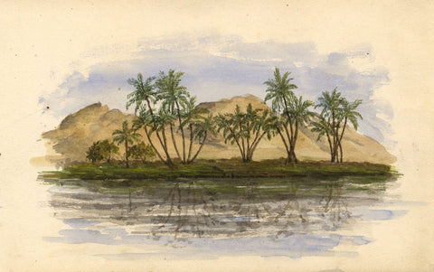 Palm Tree Reflections, Nile, Egypt - Original 1874 watercolour painting