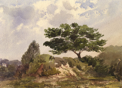 Old Oak Tree in a Forest Landscape - Original 1873 watercolour painting