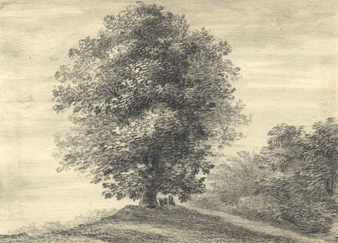 Possibly W.A. Delamotte, Joe Pullen's Tree, Oxford - Early 19th-century drawing