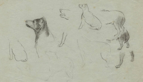 Studies of an Attentive Dog - Original early 19th-century graphite drawing