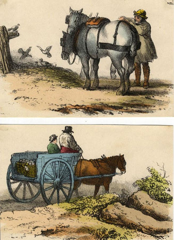Boy with a Horse and Cart, Two Sheets - Original 1859 hand coloured lithograph