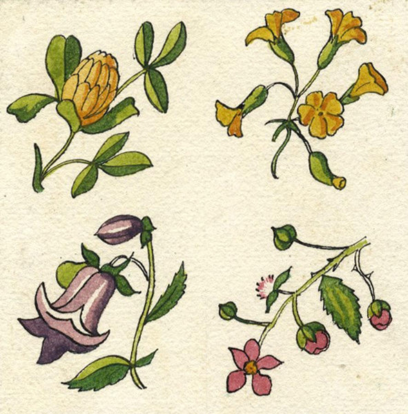Aquilegia & Pink Flower Tile Design - Early 20th-century watercolour painting