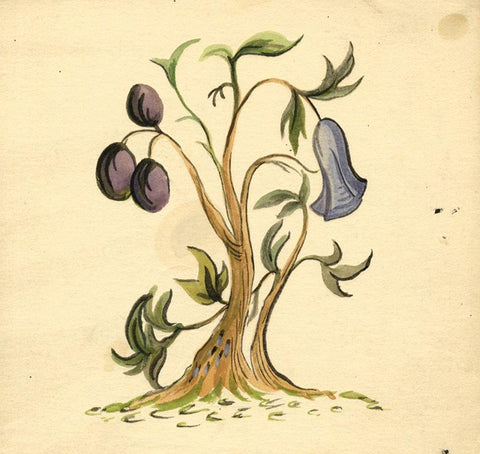 Blue Flowering Fruit Tree Design - Early 20th-century watercolour painting