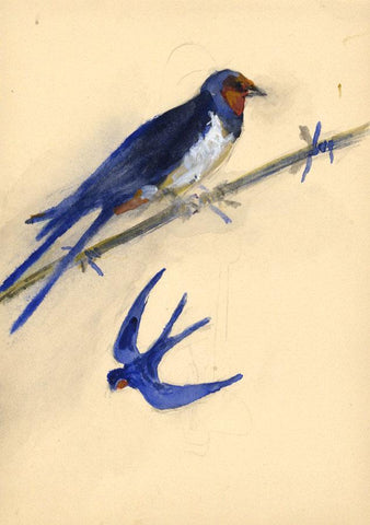 Ellen M. Murray Thomson, Birds, Two Swallows - Mid-20th-century watercolour