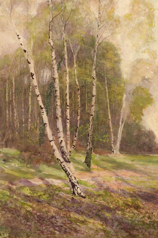 James Thomas Watts RCA, Silver Birch Woodland -19th-century watercolour painting