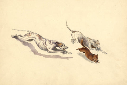 Hound Dogs Chasing Fox - Original 19th-century watercolour painting