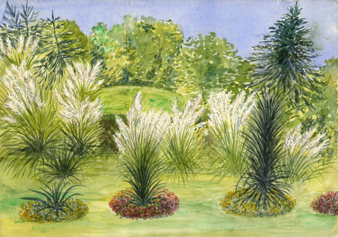 F.E. Genlloud, Flower Beds with Pampas Grass - 1900s watercolour painting