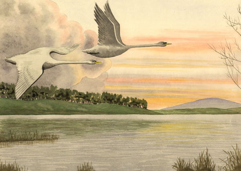 Allan Furniss, Sunset Geese, Castle Loch, Lochmaben - 1940s watercolour painting