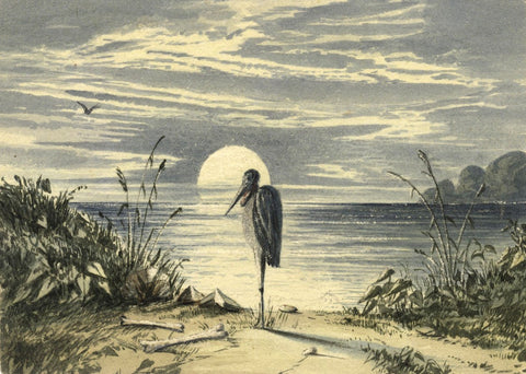 Adelaide L. Haslegrave, Moonlight Study with Stork Bird - 1880s watercolour