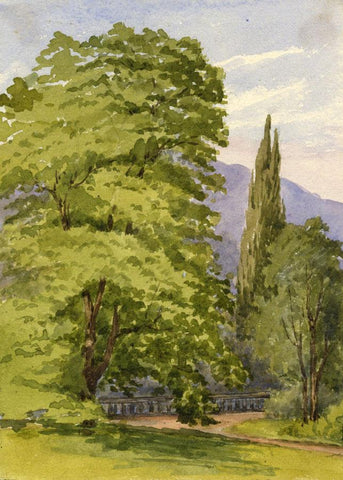 Dashwood, Garden View with Cypress Tree - Mid-19th-century watercolour painting