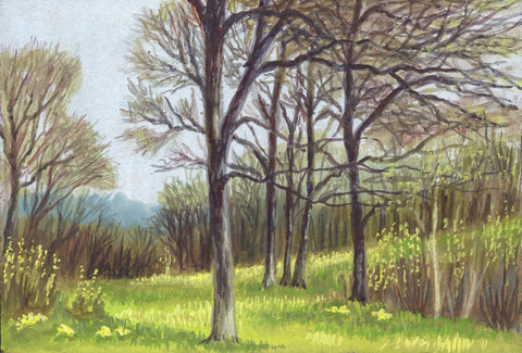 Victor Papworth, Springtime Forest near Warwick - Original 1970 gouache painting