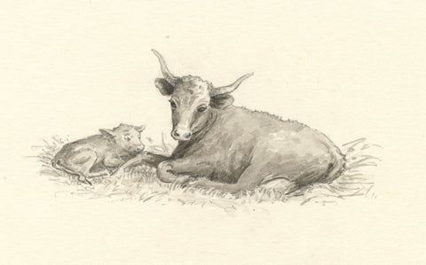 Claire Rome, Resting Cow with Calf - mid-20th-century watercolour painting