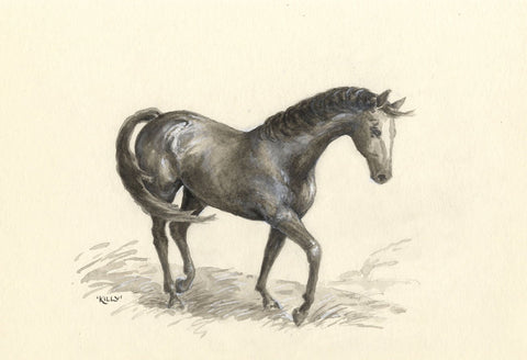 Claire Rome, Horse with White Blaze - mid-20th-century watercolour painting