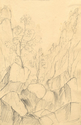 Alfred Swaine Taylor, Lodore Falls, Derwentwater, Lake District - 1833 drawing