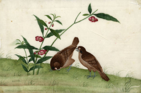 Antique 19th-century Chinese Pith Painting, Eurasian Tree Sparrow Birds & Flower