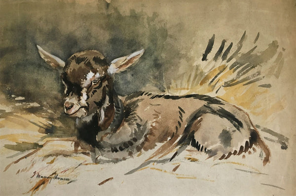 John Murray Thomson RSA, Resting Kid Goat -mid-20th-century watercolour painting