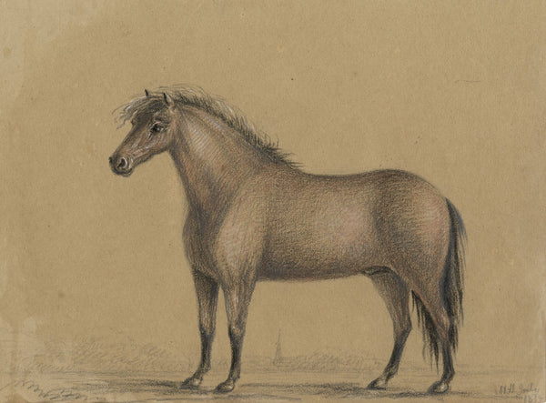 M. Heber, Horse - Original 1818 chalk drawing