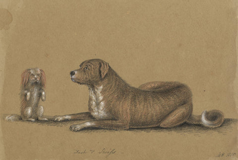 M. Heber, Dogs 'Dash & Swiss' - Original 1818 graphite drawing