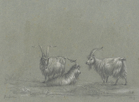 M. Heber, Three Goats after Nichlas Berghem - Original 1819 graphite drawing