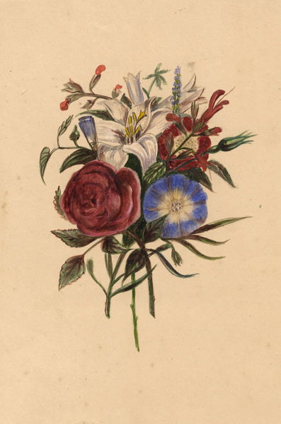 Floral Posy with Rose, Lily & Morning Glory - 19th-century watercolour painting