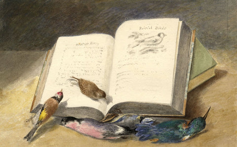 Hannah Mary Rathbone, Dead Bird Still Life with Book - 1871 watercolour painting