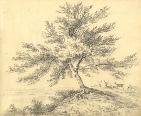 C.B. Pearson, Deers Resting under Tree, Surrey - Original 1820 graphite drawing