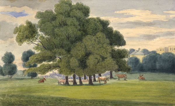 W. Allcot, Cows under Copse of Trees - Original 1850s watercolour painting
