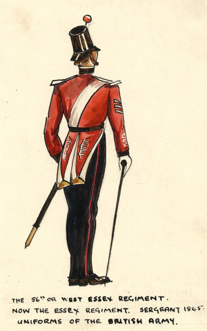 British Army Uniform: Essex Regiment, Sergeant, 1845 - Early C20th watercolour