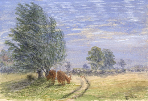 E. Venis, Grazing Cows, Hastings - Late 19th-century watercolour painting