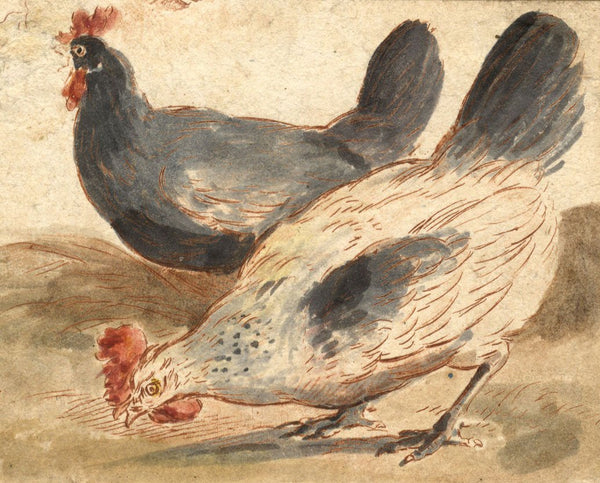 Attrib. Marmaduke Cradock, Chickens - 17th-century engraving with watercolour