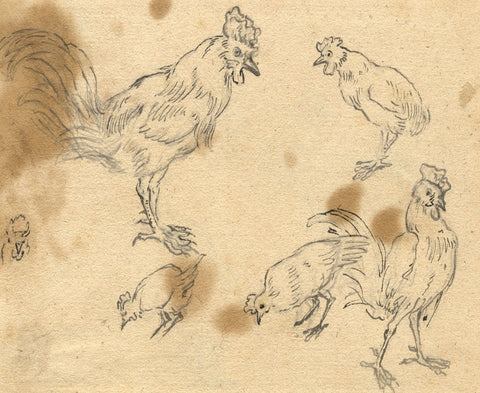 Attrib. Marmaduke Cradock, Studies of Poultry - 17th-century pen & ink drawing
